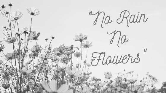 No Rain No Flowers (1)